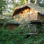 Cabane famille des Grands Lacs herronière